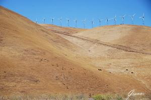 California on the road - Quanti generatori eolici!!!!