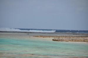 Onde del Pacifico sulla barriera corallina