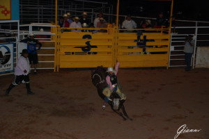 Rodeo vicino a Page