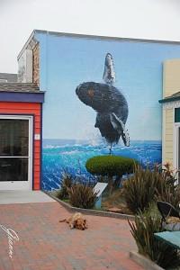 Murales a Morro Bay