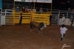 Arizona - Rodeo vicino a Page