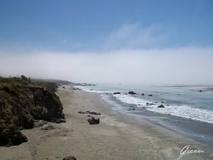 La spiaggia di San Simeon