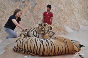 Il tempio delle tigri