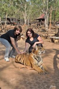 Thailandia -Il tempio delle tigri
