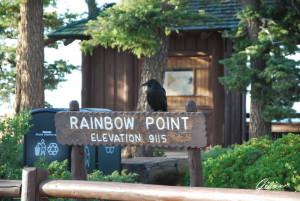 Il custode di Raimbow Point