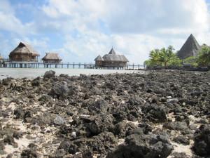 Scogliera di corallo