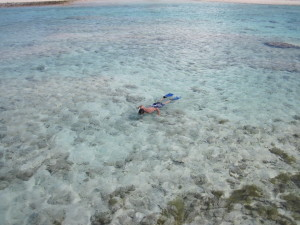 Snorkeling a Tikehau