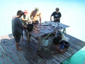 Al ritorno dalla pesca