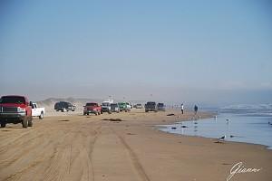 La spiaggia di Pismo Beach