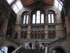 L'atrio del Museo di Storia Naturale