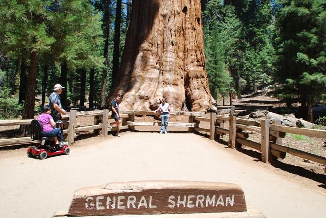 Il Generale Sherman