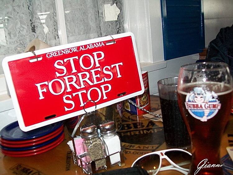STOP Forrest STOP
