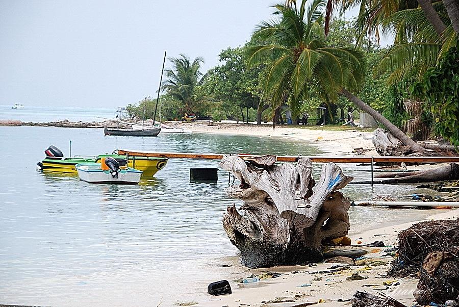 Isola di Dhiffushi