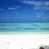 maldive, meeru, resort, dhiffushi, snorkeling, pesce, balestra, scorpione, spiaggia, mare,