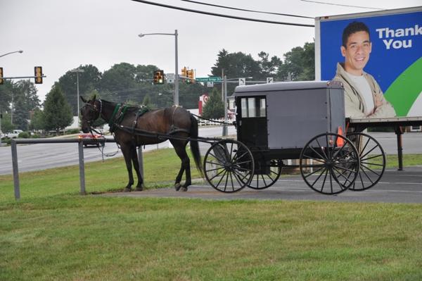 Una carrozza Amish