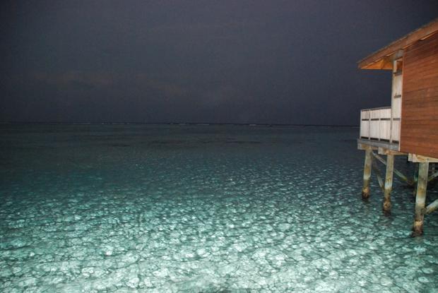 Maldive - Il mare di notte