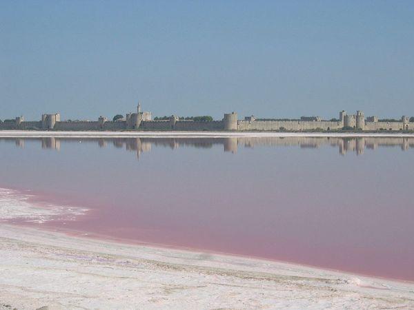 Le saline di Aigues Mortes