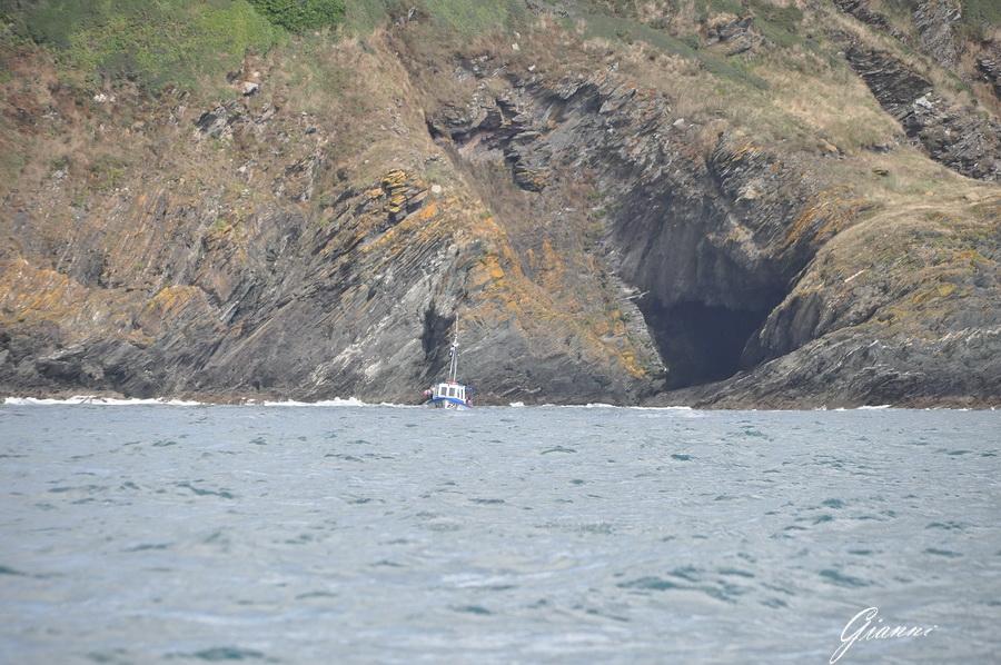 Polperro - Grotte marine