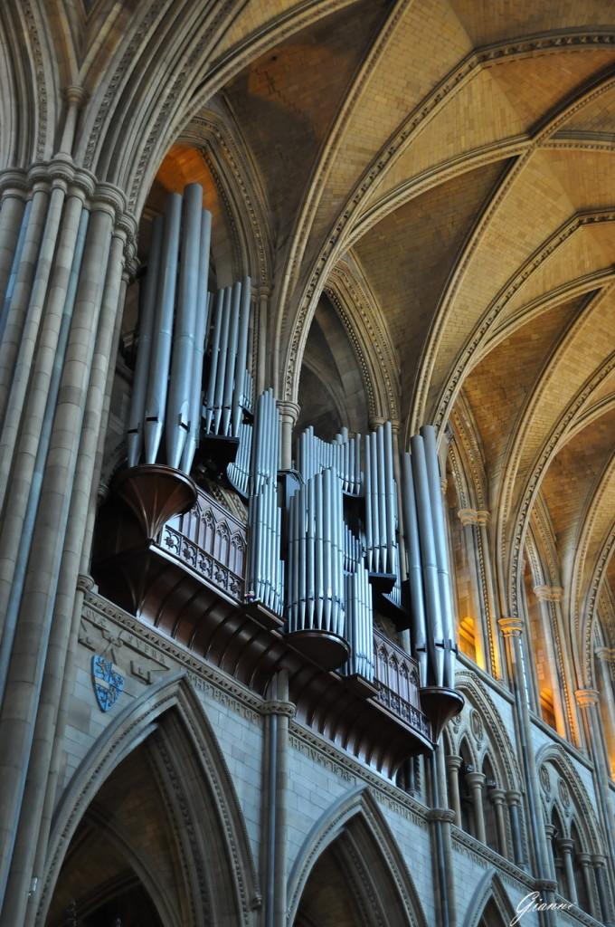 Cattedrale di Truro - L'organo