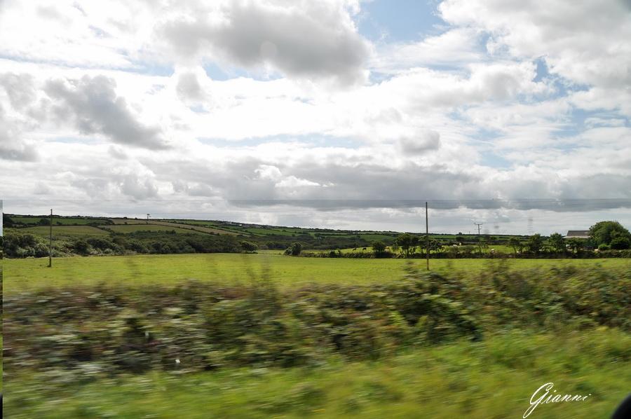 Erba verde, nuvole e cieli azzurri