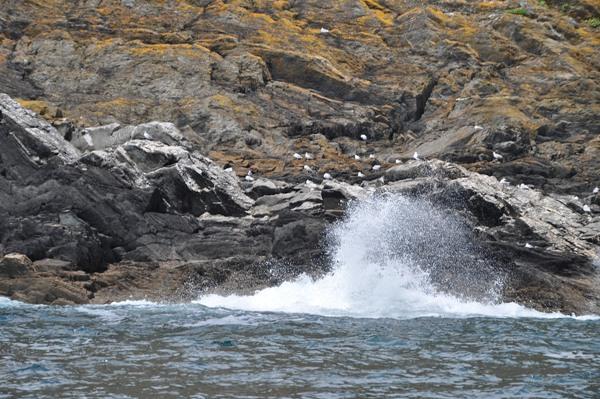 La costa vicino a Polperro