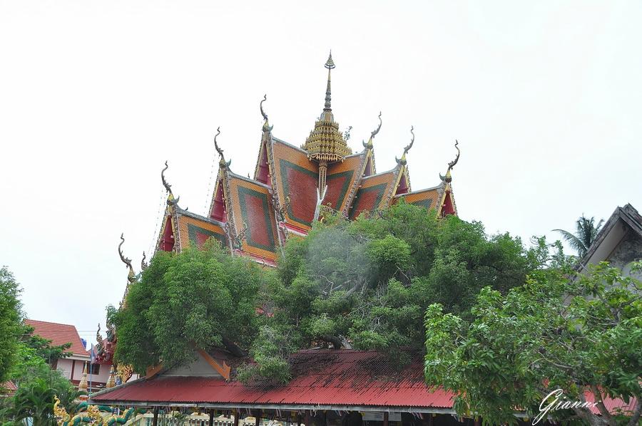 Tahilandia - Koh Samui - Wat Plai Laem