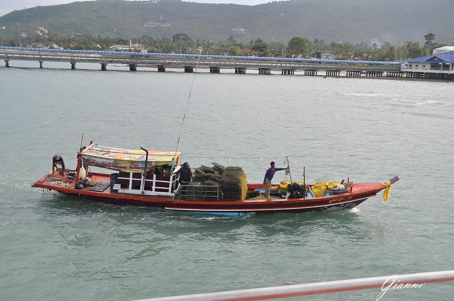 Battelli nel Porto di Nathon Koh Samui