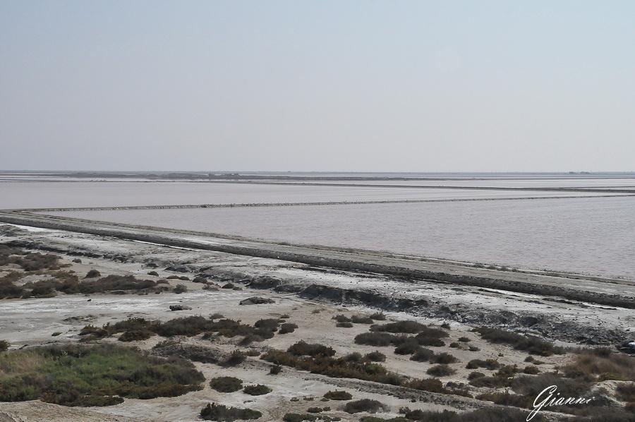 Camargue - Le saline