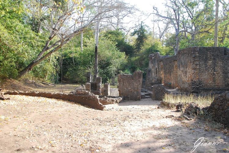 Kenya - Rovine di Gede
