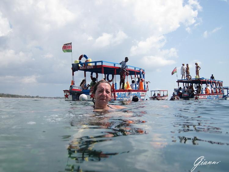 Safari Blu - Una nuotatina...