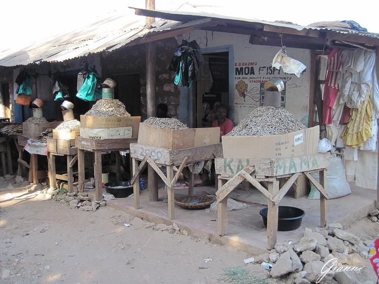 Kenya - Malindi - Pesce secco al mercato