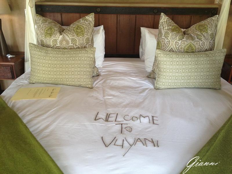Benvenuti a Vuyani Safari Lodge
