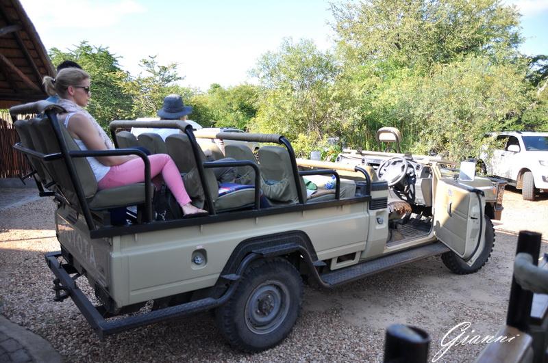 Pronti per il safari