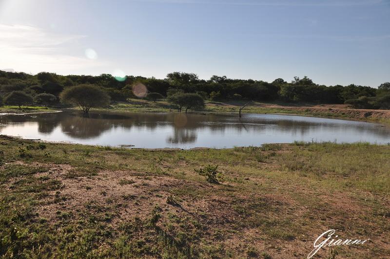 Laghetto nella riserva Modlito