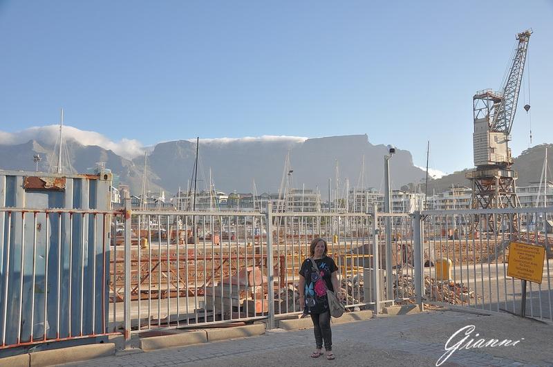 Sullo sfondo la Table Mountain