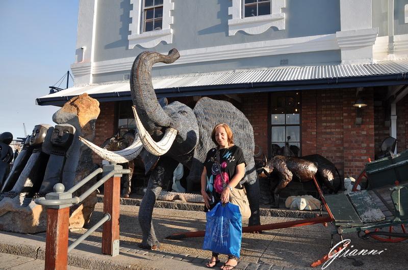 Elefante cittadino