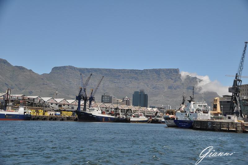 Il porto e sullo sfondo le Table Mountain
