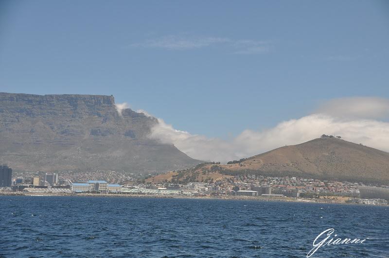 Cape Town dal mare