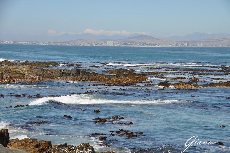 Città del Capo vista da Robben Island