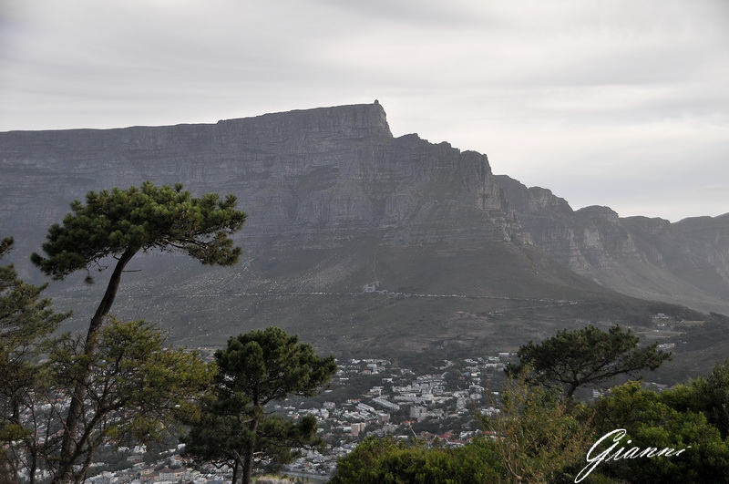 Table Mountain da Signal Hill