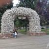 Arco di corna