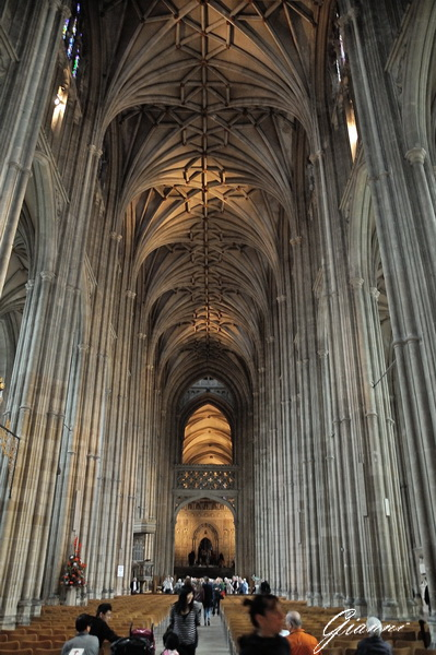 La navata principale