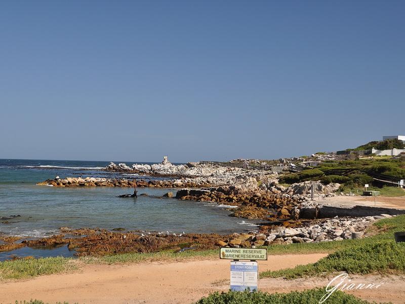 Betty's Bay