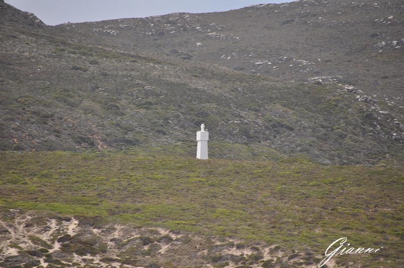 Monumento a Vasco de Gama