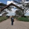 Serengeti - Il portale di ingresso