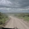 Serengeti - Strade polverose