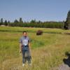 Souvenir con bisonte