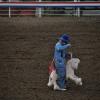 Cowboy sui generis...
