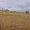Lapidi sul campo di battaglia