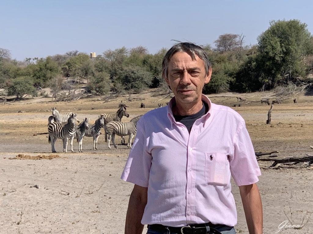 Souvenir con sfondo zebrato